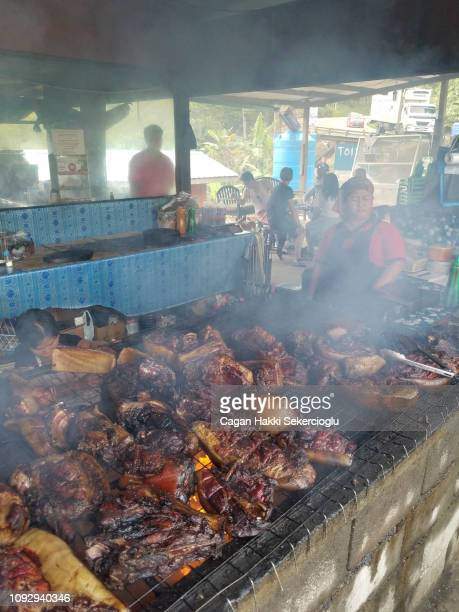 Locals cooking Bornean bearded pig, Sus barbatus, which is threatened with extinction. It is the favourite game of the native people of Borneo, representing 97% of the bushmeat volume consumed by the Punan hunter-gatherers.