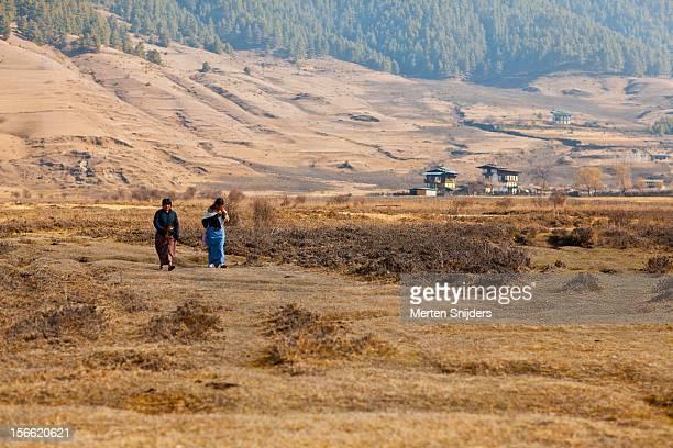 locals crossing phobjika valley - merten snijders stockfoto's en -beelden