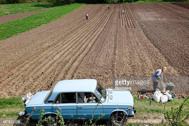 Locals plant seed crops in a field in the countryside outside Ternopil Ukraine on Friday May 2 2014 The US is the top wheat shipper while Russia...