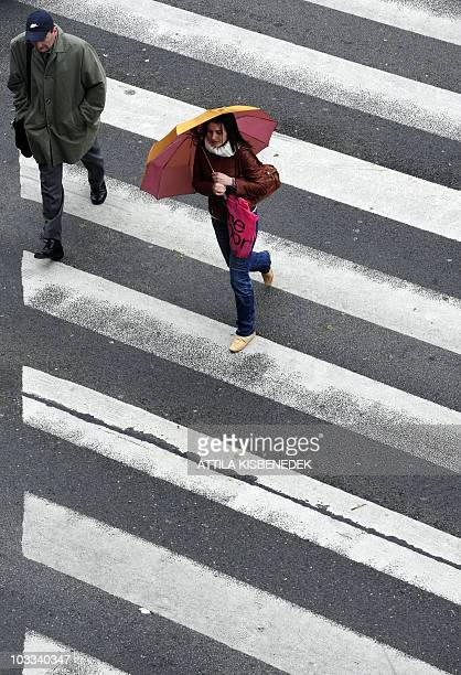 Locals walks in a zebra crossing in Budapest on May 17 2010 as heavy rainfall and floods hit the country 'So far around 2093 inhabitants around the...
