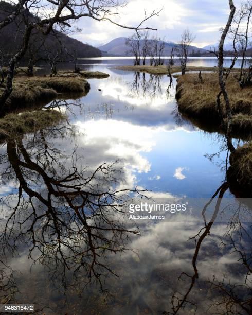 Loch Arkaig refelctions