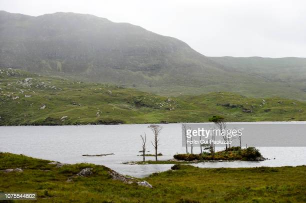 Loch Assynt, Sutherland, Scotland