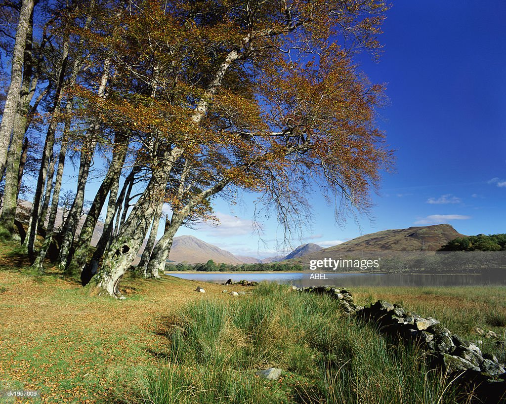 Loch Awe, Argyll, Scotland, UK : Stock Photo