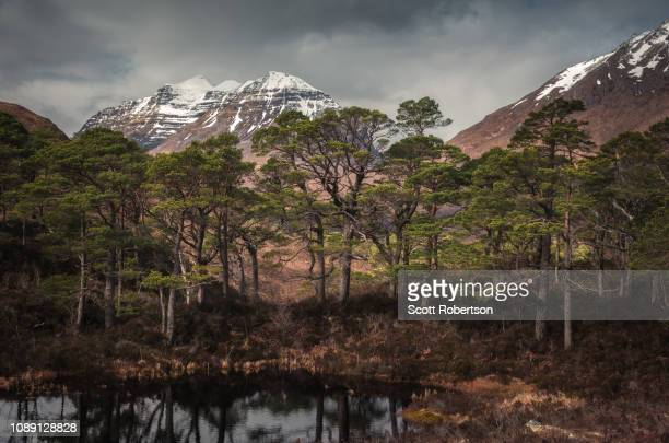 loch clair, torridon - wester ross stock pictures, royalty-free photos & images