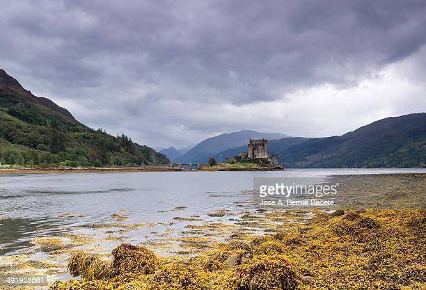 Loch Duich in the center Eileand Donan castle, surrounded by water and with lots of orange seaweed in its waters, a day of storm clouds and rain....