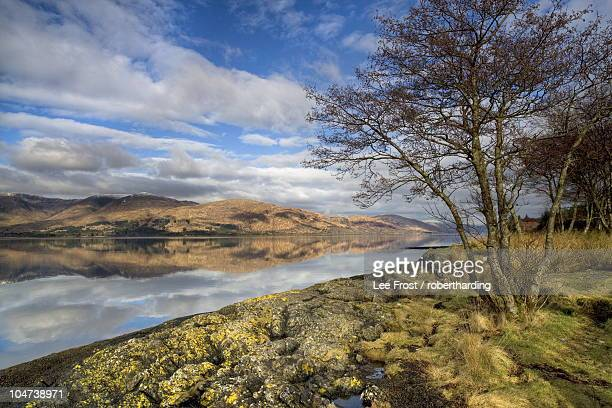 Loch Linnhe in flat calm winter weather with reflections of distant mountains and tree-lined shoreline, near Fort William, Highland, Scotland, United Kingdom, Europe