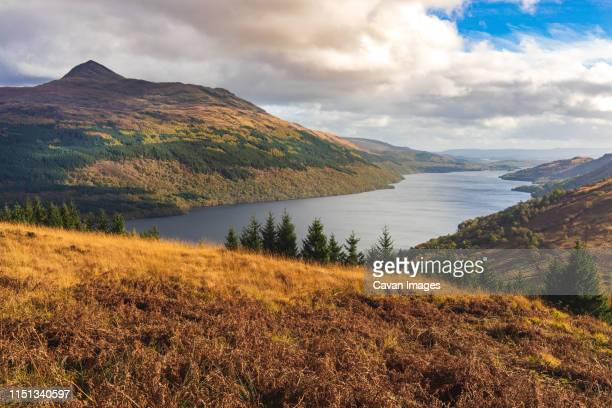 loch lomond in the autumn, scotland - national park stock pictures, royalty-free photos & images