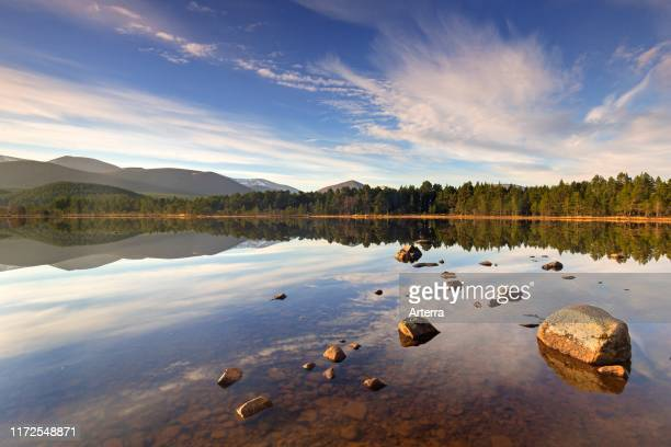 Loch Morlich and Cairngorm Mountains Cairngorms National Park near Aviemore Badenoch and Strathspey Scotland UK