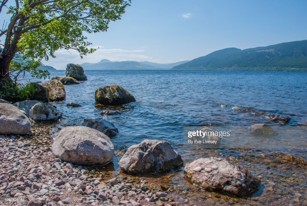 Loch Ness Shoreline : Stock Photo