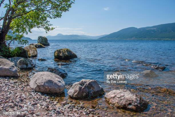 loch ness shoreline - lakeshore stock pictures, royalty-free photos & images