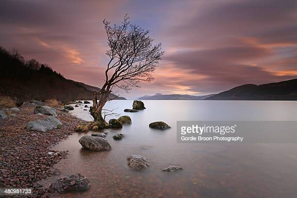 a  loch ness sunset. - loch ness stock photos and pictures