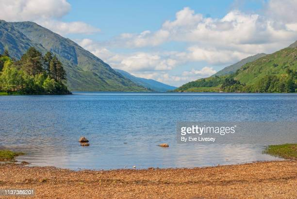 loch shiel - water's edge stock pictures, royalty-free photos & images
