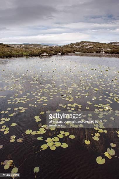 lochen in the hebrides - lily harris photos et images de collection