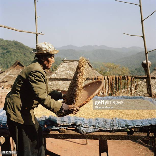 Locheu winnows his crop of rice on the balcony of his traditional old Akha house in the Ban Nam Sa Akha village high up on a mountain slope in the...