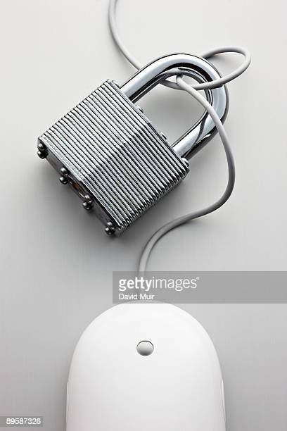 lock and computer mouse