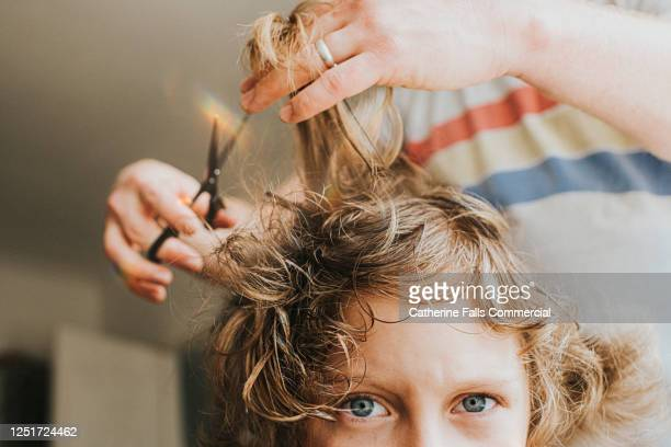 lockdown haircut - falling stock pictures, royalty-free photos & images