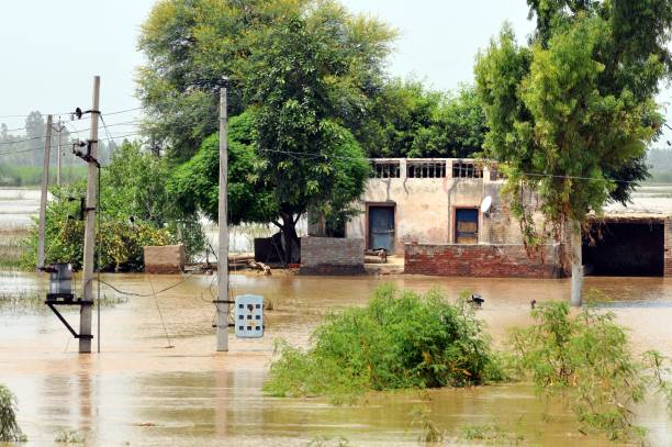 Locked houses due to flood near village Baoopur on August 11 2017 near Jalandhar India More than 34 villages affected with flood