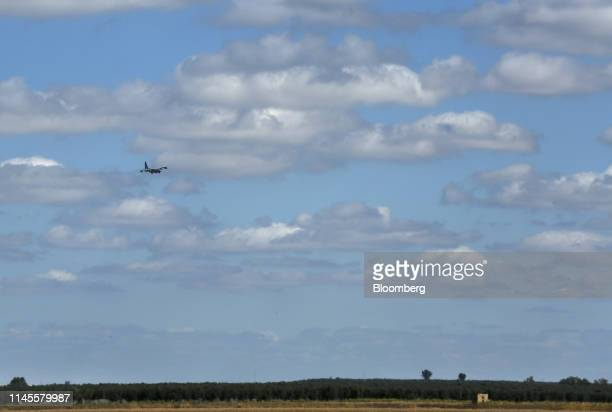 A Lockheed C130 Hercules aircraft flies over an olive grove as it prepares to land at the Moron Air Base in Arahal Spain on Wednesday March 13 2019...