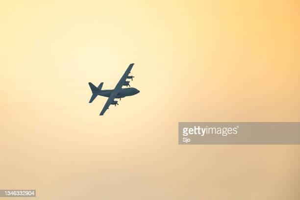 """lockheed c-130 hercules military airplane flying in mid air during sunset - """"sjoerd van der wal"""" or """"sjo"""" stockfoto's en -beelden"""