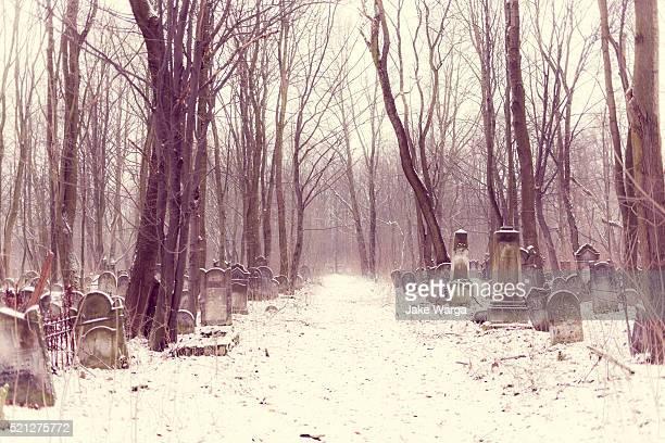 lodz cemetery, winter, poland - jake warga fotografías e imágenes de stock