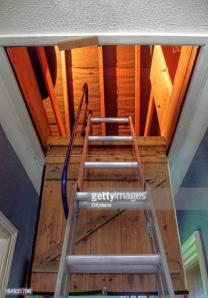 Loft Hatch And Ladder Seen From Below