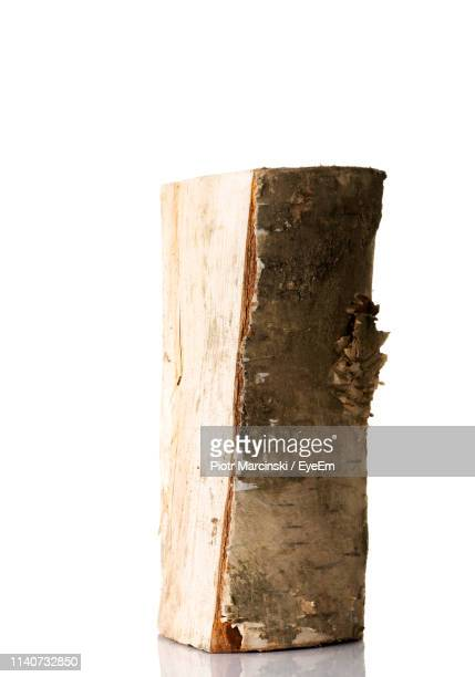 log against white background - log stock pictures, royalty-free photos & images