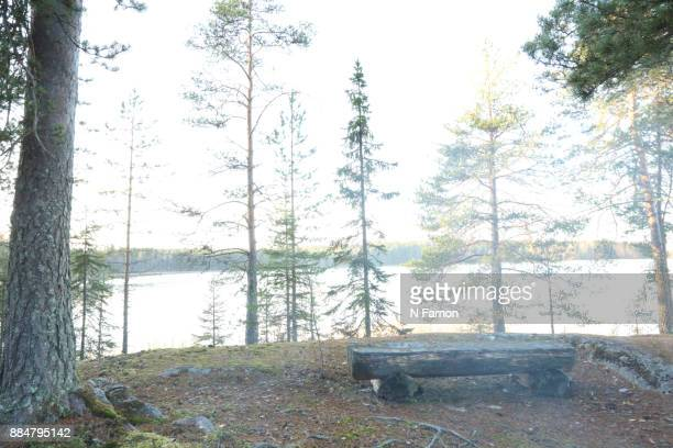 Log bench by the lake in Finland