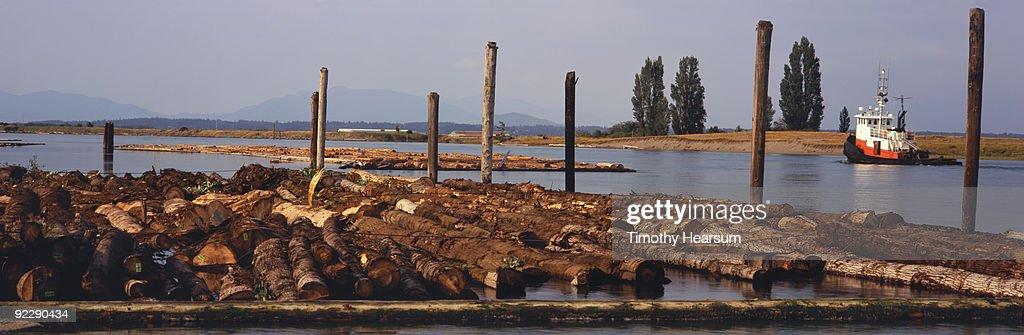 Log boom and tugboat on Swinomish Channel : Stock Photo