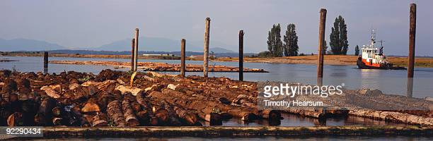 log boom and tugboat on swinomish channel - timothy hearsum stock photos and pictures