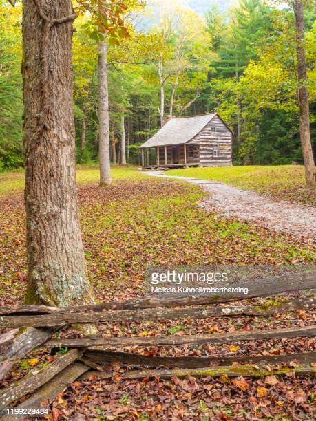 log cabin, cades cove, great smoky mountains national park, tennessee, united states of america, north america - cades cove stock pictures, royalty-free photos & images