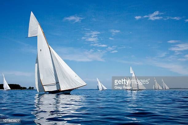 log canoe sailing regatta - chesapeake bay stock pictures, royalty-free photos & images