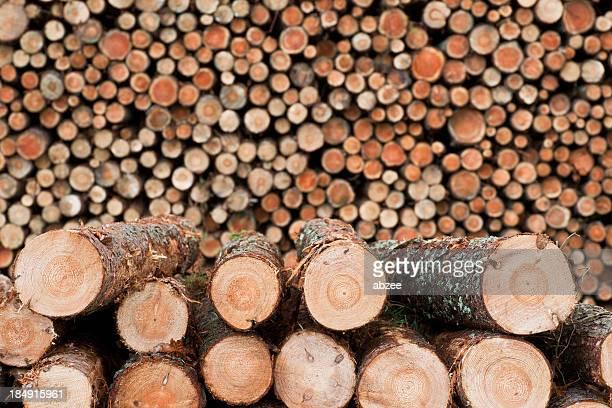 Log pile, horizontal view