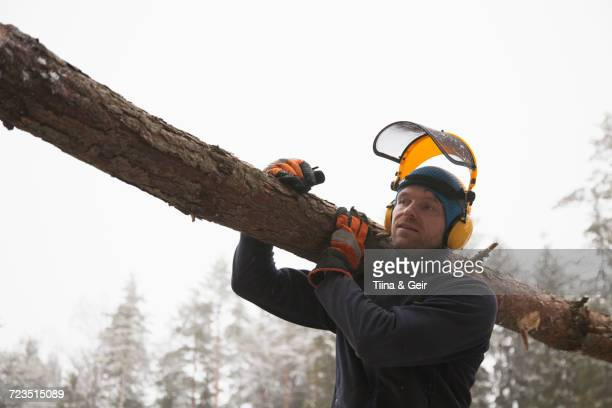 Logger carrying log, Tammela, Forssa, Finland