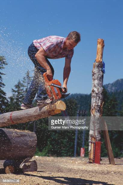 logger cutting a log with a chain saw - montanhas north shore imagens e fotografias de stock