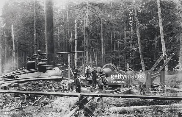 Loggers using a bull donkey engine to skid logs