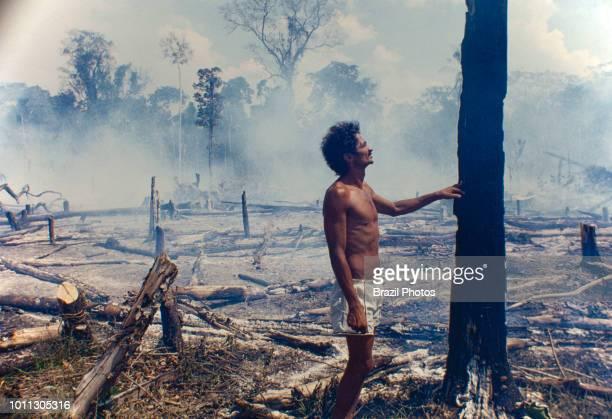 Logging Amazon deforestation slashedandburned patch of forest at Acre State Brazil
