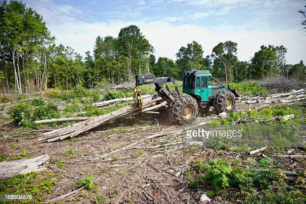 Logging equipment working