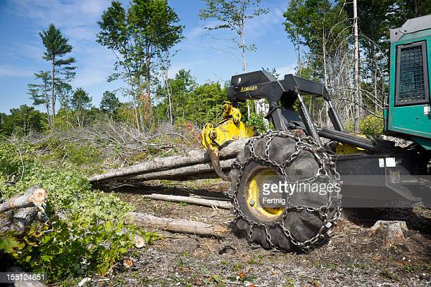 Logging grapple skidder in the bush hauling logs