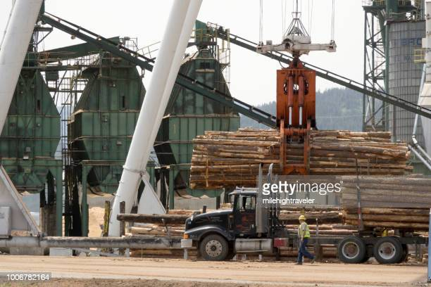 Logging industry sawmill crane picks up semi truck logs Colville Washington lumber