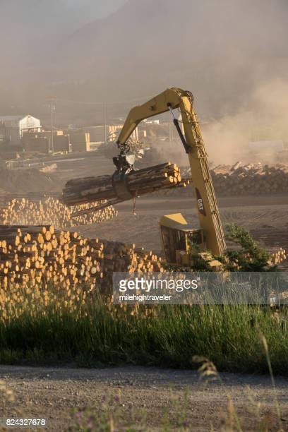 Logging mill crane logs dusty Radium Hot Springs British Columbia
