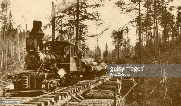 """Logging Railway, British Coumbia', 1930. From """"The Wonder Book of Railways"""", edited by Harry Golding. [Ward, Lock & Co., Limited, London and..."""