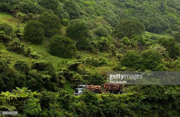 Logging truck New Zealand