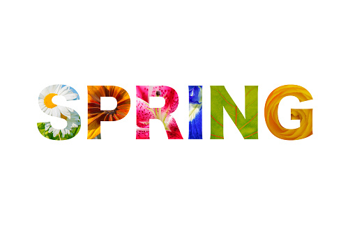 Logo lettering spring word - isolated over white 913582538