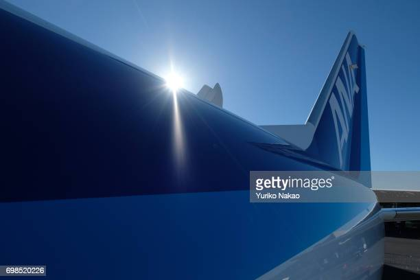 A logo of All Nippon Airways the launch customer of Mitsubishi Regional Jet is pictured at the Le Bourget Airport during the 2017 Paris Air Show on...