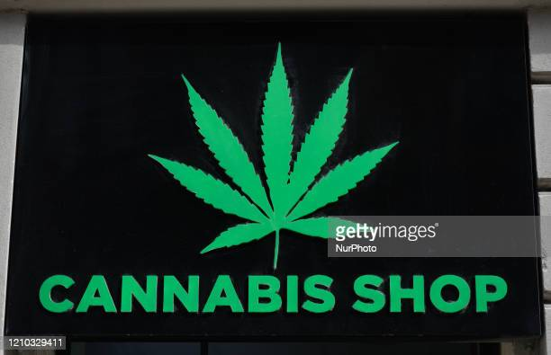 Logo of Dr Ziolko Cannabis Shop, a legally operating store in Krakow's city-center, selling hemp products including cosmetics, hemp flowers and...