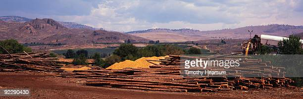 logs and wood chips with mountains in background - timothy hearsum stock-fotos und bilder