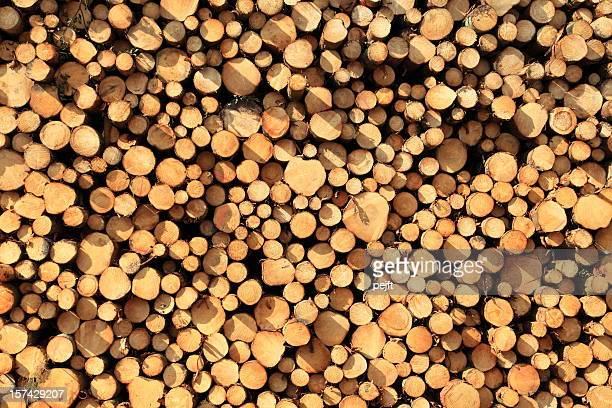 logs full frame xxxl - pejft stock pictures, royalty-free photos & images