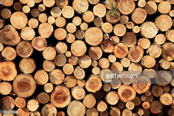 logs in a stack - full frame xxxl - pejft stock pictures, royalty-free photos & images