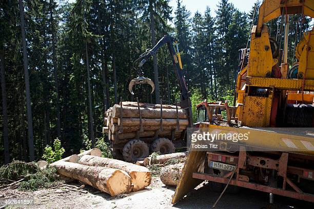 Logs loading in commercial land vehicle