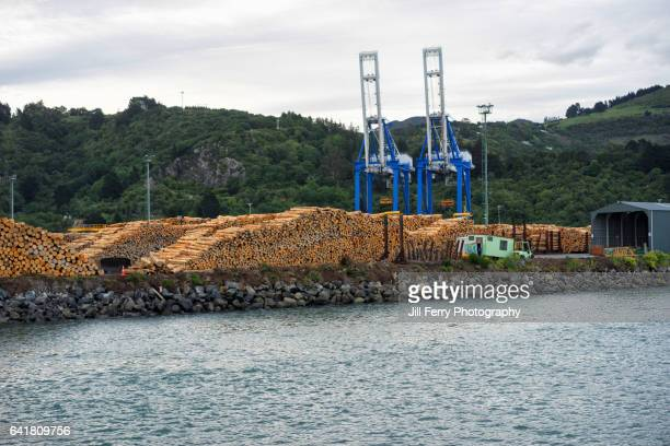 Logs on the wharf at Port Chalmers.